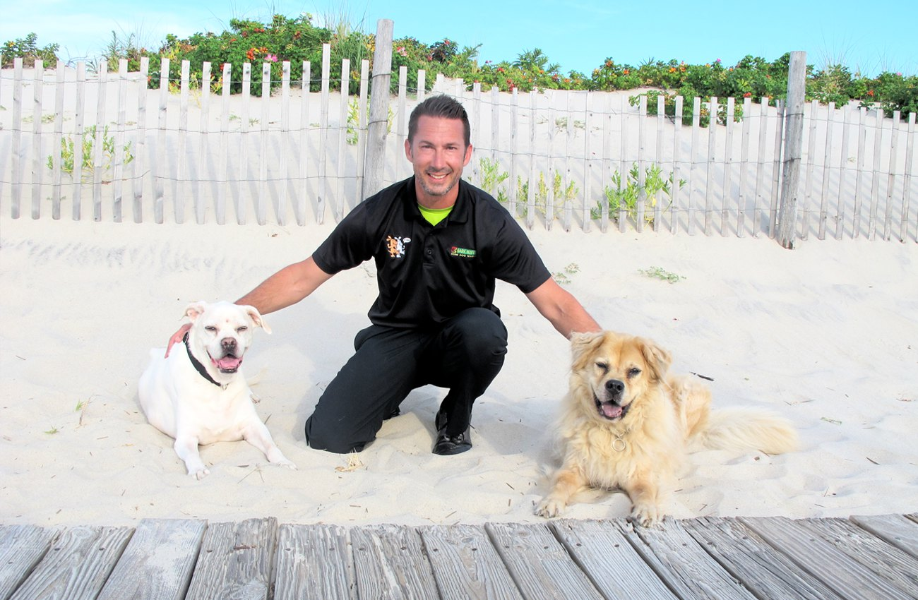 Bark Busters Home Dog Training For Northern New Jersey Dog