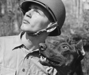 #dogs #USMC #SemperFi #BarkBusters #dogtrainer #dogtrainingNorthernNewJersey #speakdog #puppies #HappyDogsHappyFamilies #Rottweiler #GermanShepherd #Malinois #DobermanPinscher #dogsOfBarkBusters #Paramus #Ridgewood